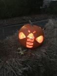 Bee Jack-o-lanter